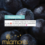 HappyDay Milamores Colombia Infusiones