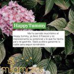 HappyTummy Colombia InfusionesNaturales Milamores