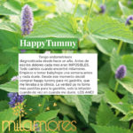 HappyTummy Colombia Milamores InfusionesNaturales