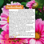 PerfectBody Milamores Colombia Infusiones Bajardepeso